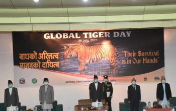 Remarks by Ambassador at World Tiger Day